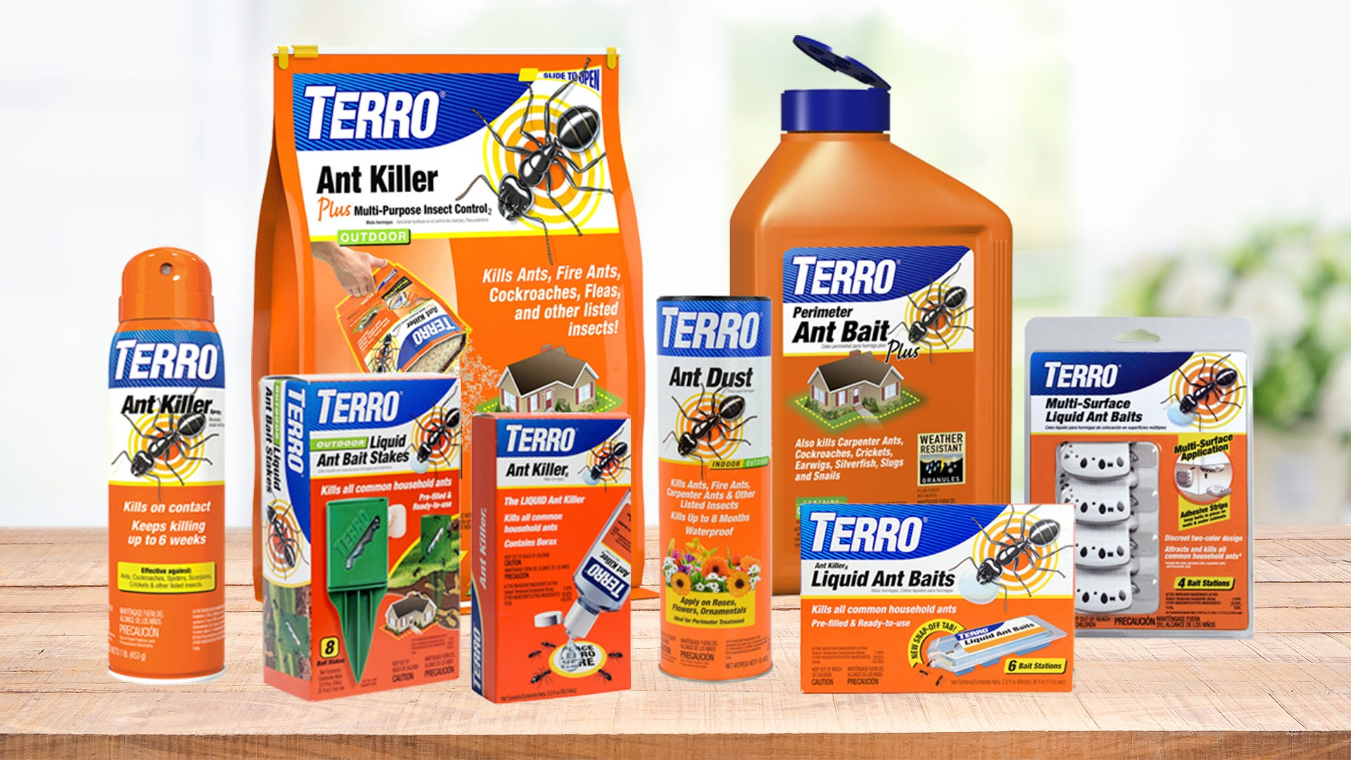 DIY Ant Killers – Which is Best?