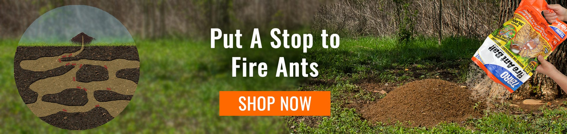 fire ant mound being treated with TERRO Fire Ant Bait