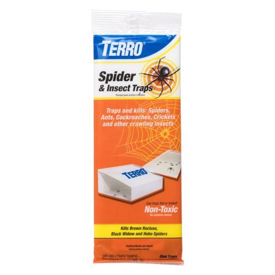 TERRO® Spider & Insect Trap - 1-Pack